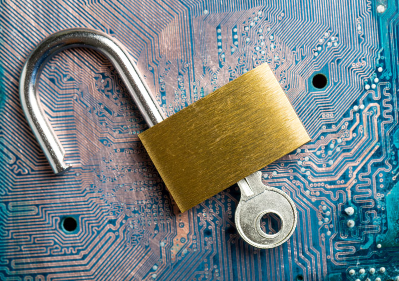 Cyber Security Tips to Keep Your Business Safe from a Data Breach